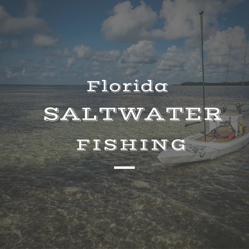 Fida saltwater fishing