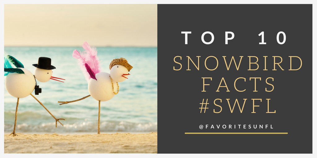 Top 10 Snowbird Facts for SWFL