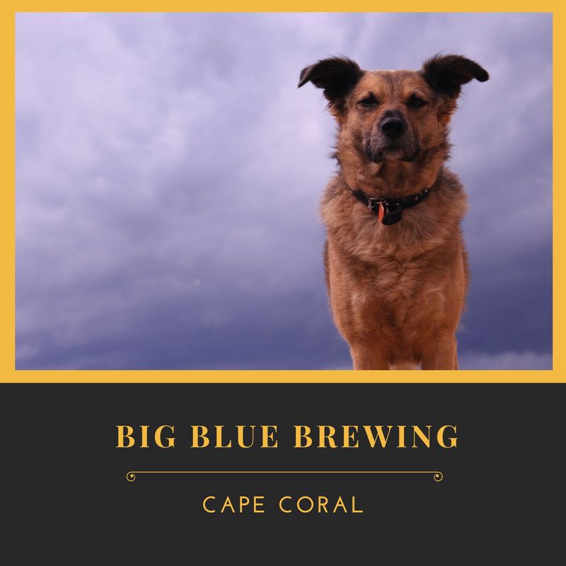 Big Blue Brewing in Cape Coral